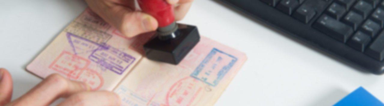 Global Online Visa Application Outsource Service Provider