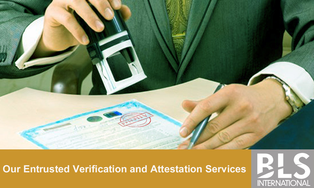 Be a part of Our Entrusted Verification and Attestation Services